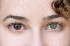 How Do Eyes React To Light Acuvue Oasys Transitions Contact Lenses That Get Dark In