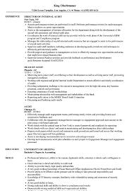 Sample Auditor Resumes Audit Resume Samples Velvet Jobs