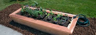 diy how to build a raised garden bed