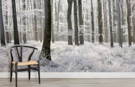 winter-frost-forest-forest-room-wall-murals