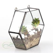 ... Popular Plant Pot Trays Buy Cheap Lots From Succulent Flower Pots  Geometric Hexagon Glass Terrarium Box