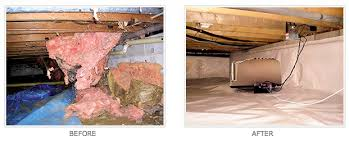 crawl space encapsulation cost. Delighful Space John S Pest Control U2022 If It Bugging You We Ll Kill Crawl Space And Encapsulation Cost A