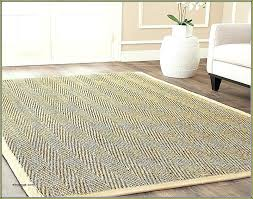 sisal rugs canada allaboutyouth net