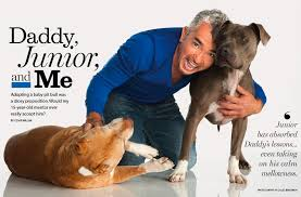Pitbull Quotes 81 Best Cesar Millan National Geographic Dog Trainer Dude Thinks Pit Bulls