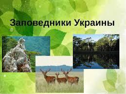 Заповедники Украины презентація з географії Заповедники Украины Заповедники