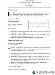 cv work history examples example cv template free example cv in microsoft word