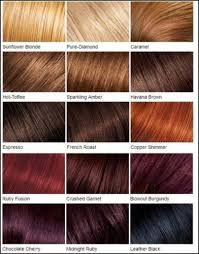 Loreal Color Chart Loreal Color Chart Different Blonde Brown Red Dark Hair