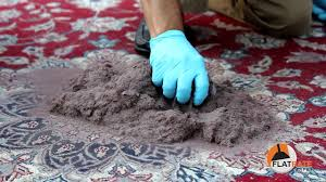 the oriental rug cleaning process