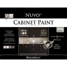 Nuvo Cabinet Paint Reviews Pull Out Shelves Kitchen Photo Under Sink Drawer Storage Images