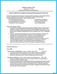 Internal Auditor Resume Objective Internal Audit Resume Elegant Auditor Format Contegri Of 100a 19
