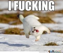 Finniest-Snow-Memes-Ever5.jpg via Relatably.com