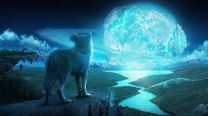 Wolf In A Fantasy World Ultra Hd 4k Wallpaper Wolf