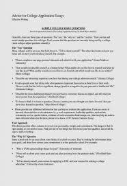 Elegant Resume Opening Statement Examples Atclgrain Resume