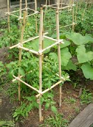 Diy tomato cage Nepinetwork Homemade Bamboo Cages Balcony Garden Web 18 Diy Tomato Cage And Stake Ideas Balcony Garden Web