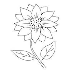 I think it may be long enough that you could even use it as a bookmark. 15 Beautiful Sunflower Coloring Pages For Your Little Girl