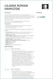 Travel Agent Job Description New Travel Consultant Job Description Pdf Anexa Creancy