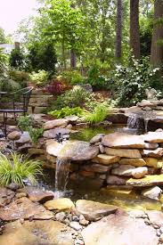 681 best H2O gardens images on Pinterest | Gardens, Body types and  Centerpieces