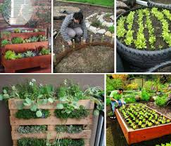 raised garden beds organize your planting areas making them easier