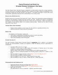 Resume Objective For Nursing Fresh Registered Nurse Bsn Resume Best