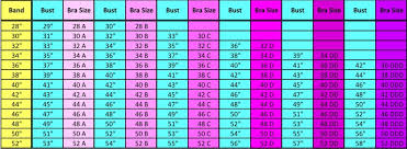 Bra Size Chart In Pakistan Victress Pk How To Measure Bra Size Ladies Undergarments