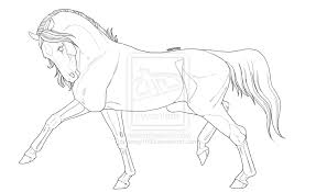 trotting horse drawing.  Trotting Trotting Horse Drawing  Photo2 And Horse Drawing O