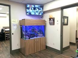 Enchanting Modern Small Fish Tank Gallery - Best idea home design .