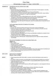 Finance Manager Planning Resume Samples Velvet Jobs Bachelor Of