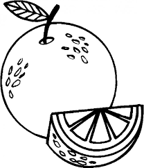 Small Picture Orange Coloring Page Coloring Pages For All Ages Coloring Home