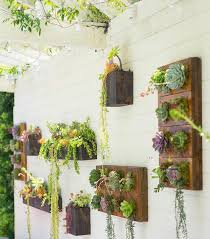 Small Picture Best 25 Succulent wall gardens ideas on Pinterest Succulent