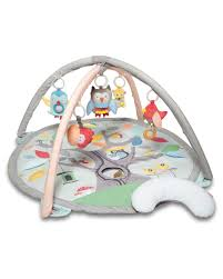 Treetop Friends Baby Activity Gym | Skiphop.com