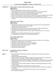 Resume Example Singapore Operations Singapore Resume Samples Velvet Jobs 9