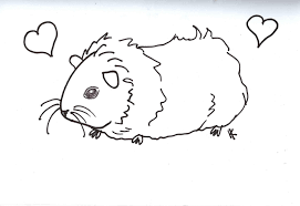 Small Picture Fresh Guinea Pig Coloring Pages 70 With Additional Coloring Pages