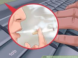 how to persuade someone to quit smoking pictures wikihow image titled persuade someone to quit smoking step 16