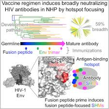 Antibody Lineages With Vaccine Induced Antigen Binding