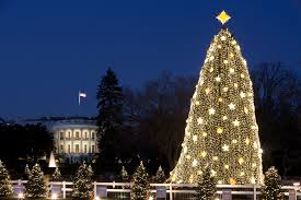 Dc Holiday Lights Tour Cheap And Affordable Holiday Light Tours