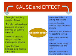 concepts human environmental interaction ppt video online 16 cause and effect desertification drought over long periods of time people cutting down trees and shrubs for firewood or building materials herds of