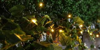 5m outdoor battery fairy lights green cable
