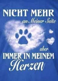 Für Immer German Language Sterben Sprüche Hunde Und