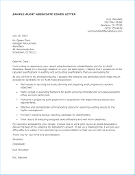 Auditor Job Description Resumes Brilliant Audit Cover Letter As Prepossessing Ideas Cover