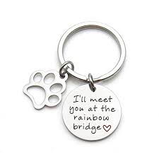 pet memorial jewelry i ll meet you at the rainbow bridge snless steel keychain pet loss gift pet sympathy gift