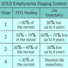 Copd Life Expectancy Chart End Stage Copd Google Search Copd Stages Respiratory