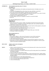 Truck Driving Resume Heavy Truck Driver Resume Samples Velvet Jobs 16
