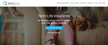 Life Insurance Quick Quote Magnificent QuickQuote Life Insurance Mentors