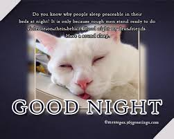 Animal puns goodnight Sweet Dreams Just Thought Of Reminding You That That You Do Not Have To Tell Instragram Or Facebook Or Twitter Goodnightu2026you Can Just Shut Up Messages Wishes And Quotes 365greetingscom Funny Good Night Messages 365greetingscom