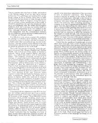 essay art jenny sophie the text became art inside turned out the  sabharwal tara selected document a digital essay by ivan prescott pg 1