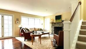 family room rugs living room area rugs new elegant floor rug with regard plus family ideas