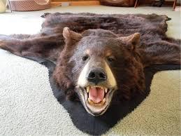 Faux Bearskin Rug Exotic Bear Skin Rug Today