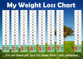 Details About Weight Loss Chart A4 1 To 10 Stone Slimming Dieting Goal Target Tracker