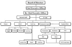 Corporate Organizational Structure Chart Organization Structure Fcb