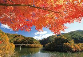 好きですみのわの秋
